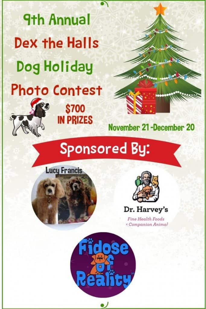 Dog Holiday Photo Contest 2019