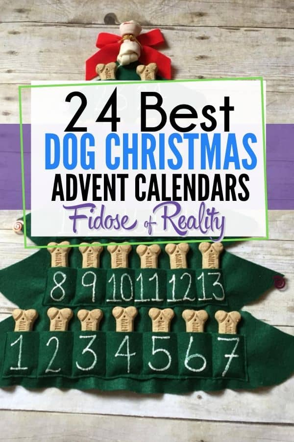 Dog advent calendar ideas