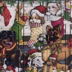 canine advent calendar for dogs