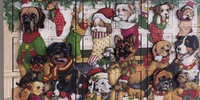 canine advent calendar for dogs