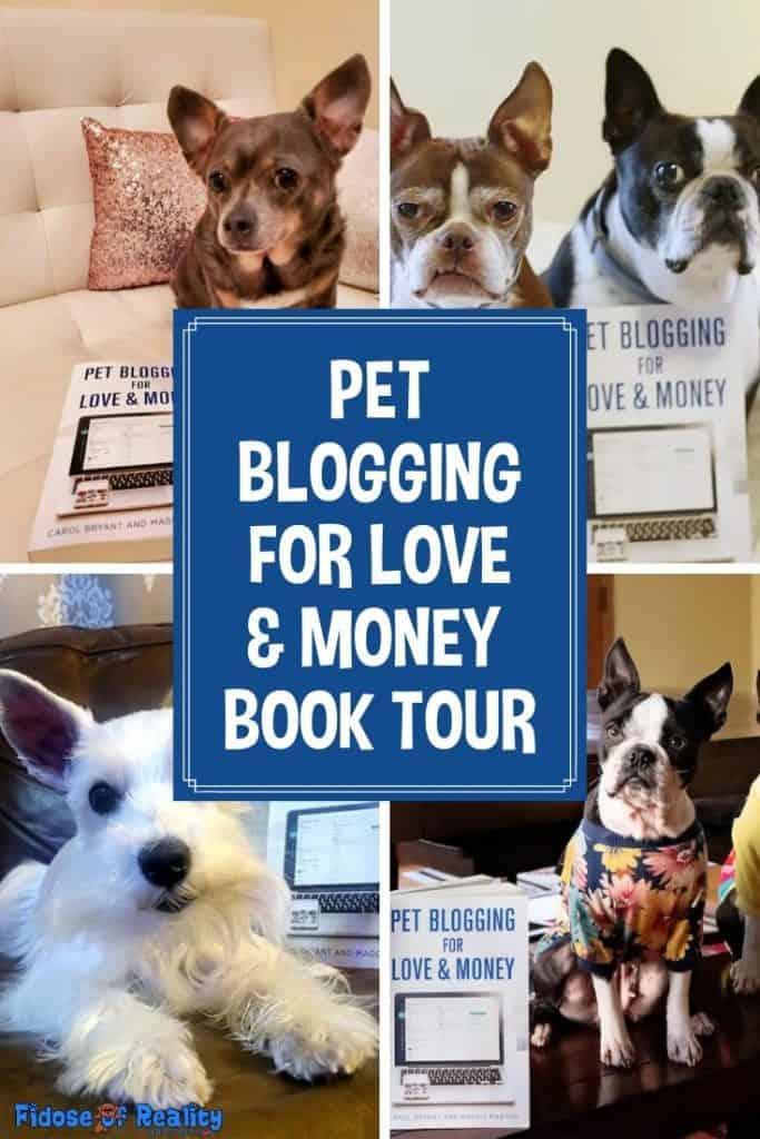 blog book tour