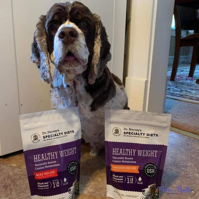 Healthy dog food helped my dog lose weight