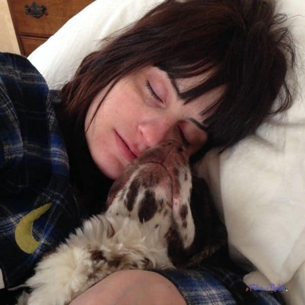 cocker spaniel likes to cuddle his mom