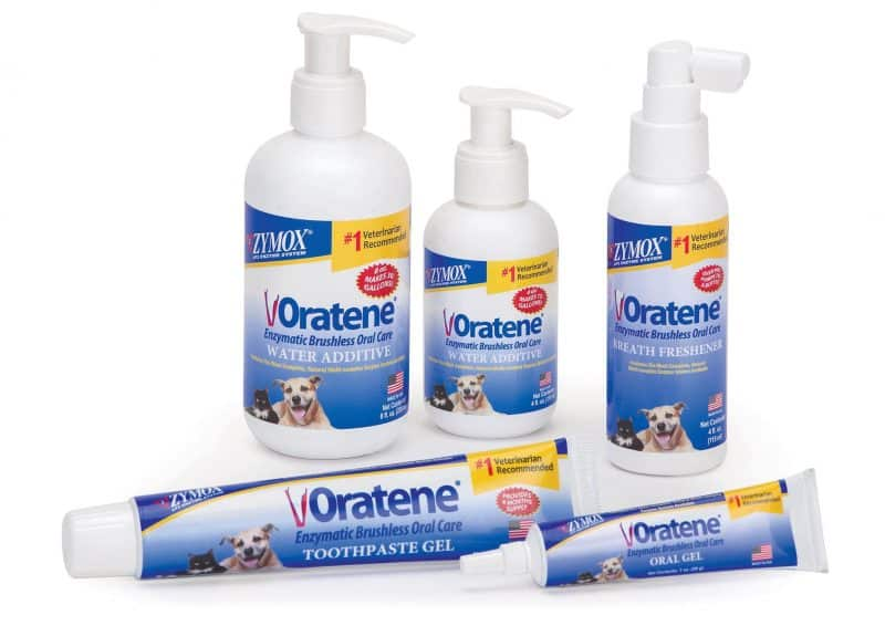Oratene brushless dental products for dogs