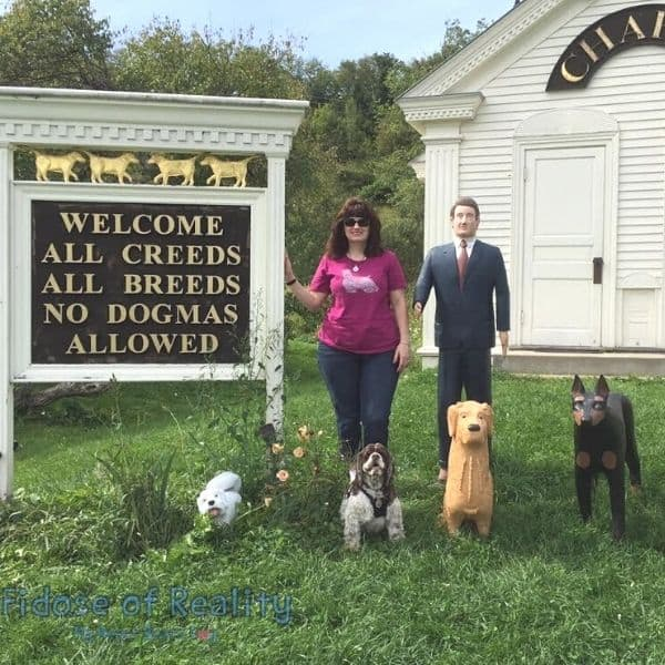 visiting dog chapel in vermont in summer