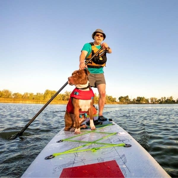 man paddleboarding with dog in summertime