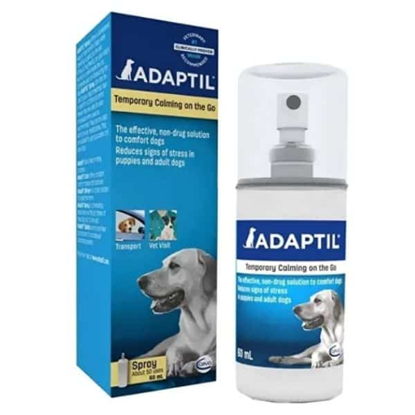 Adaptil pheromones for dogs with anxiety